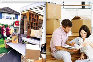 Florida State Movers Services